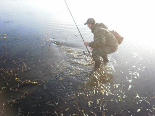 fion.ru ©<br>Любительская рыбалка